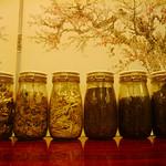 多香 - 【韓国の伝統茶】 10種類のお茶からアナタ好みのヒトツを見つけて下さい。