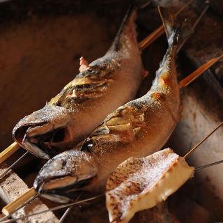 季節の魚介、野菜を炭火焼で!!