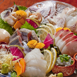 毎日、産地直送!鮮度抜群の鮮魚たちをお刺身と焼き魚で!