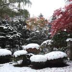 22208884 - 松岡庭園