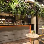 タンジェリン - ワイルドな植栽が印象的なバーカウンター