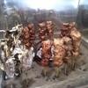 山賊茶屋 - 料理写真:アメゴ塩焼きとスーパー焼き鳥~