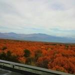 軽井沢倶楽部 ホテル軽井沢1130 - 屋上からの景色!