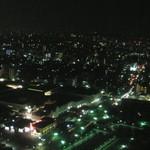 22313775 - 夜景もすてき(35F)