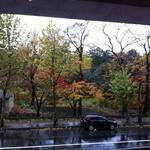 22362536 - 窓から植物園の風景も見えます