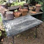 cafe KO-BA - 植木鉢