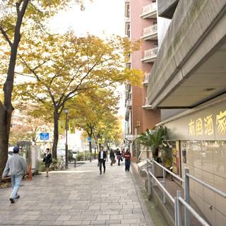 原宿駅より表参道を徒歩1分。南国酒家の旗艦店・原宿本店