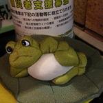 バッカナーレ - 何故か蛙さんが・・・
