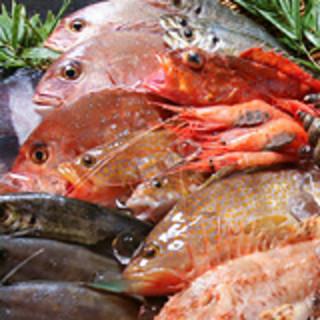 目の前の日本海でとれた地魚