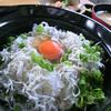 海鮮食楽 生栄丸 - 料理写真:しらす丼