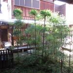 空間茶天 - 中庭