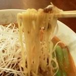 かっぱ亭 - タンタン麺 麺アップ