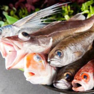 ここが違う!三重県尾鷲産の鮮魚