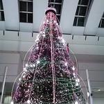22590503 - ホテル前クイーンズスクエア2Fのクリスマスツリー。