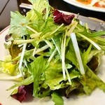 cafe Brasserie Remi - チーズフォンデュコース@サラダ