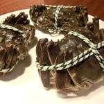 華家 - 上海蟹(調理前、まだ動いてました)