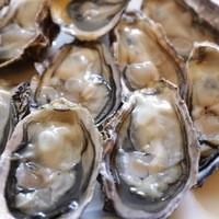 うみひこ やまひこ - 赤穂坂越産殻付き牡蠣