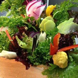 自家農園ならではの野菜達