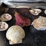 かき焼 うちの海 - 別オーダーでホタテ、大アサリ、うちわ海老