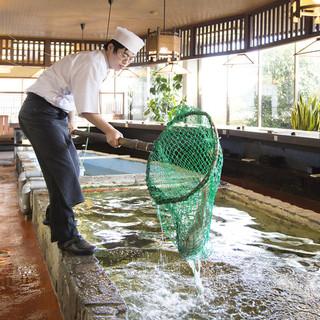 いけすで泳ぐ新鮮な魚をおろすから鮮度が違う!!