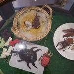 22752979 - (2013/10月)昆虫チョコ(撮影許可済)