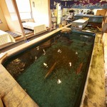 やひろ - 店内にある大型生簀では、活きのいいイカや鮮魚が泳いでいます。
