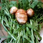 たなか - 鳥取契約農家直送の有機野菜