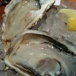 22809660 - 生牡蠣2種