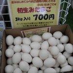 神奈川中央養鶏 直販センター -