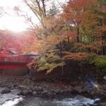 新井旅館 - お部屋からは紅葉が見れました。