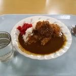 カラーズ - ひれカツカレー 550円 2013.12