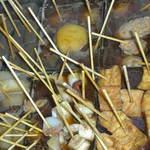 串酒場 ピザ酒場 おれんじ - 料理写真:ぐつぐつ煮えてる、味が染み込んでる、串煮込み