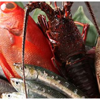 神奈川県佐島漁港の漁師さんより天然のお魚を直接買い入れております。