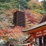 22979271 - 談山神社の紅葉