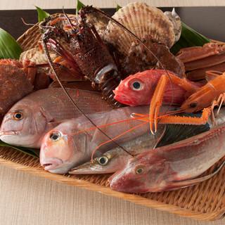 店主独自のネットワークで獲れたての魚介類が食べられます