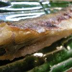 竹はる - コマイの焼物