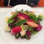 ビストロ ダイア - 身が厚い自家製瞬間燻製レアサーモンとサラダ。どこの店も、ランチにこれくらい野菜盛って欲しいです!