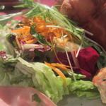 アルモニア - 自然栽培の野菜たっぷりサラダ
