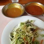 カバブ - 料理写真:カレー2種とサラダ