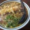 白椿 - 料理写真:天ぷらカレーうどん