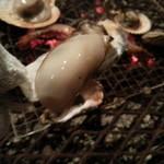 23084552 - 牡蠣