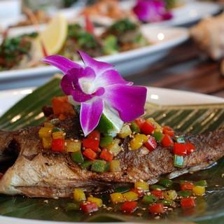 相模湾近海で水揚げされた新鮮な魚をパシフィック・リムで!