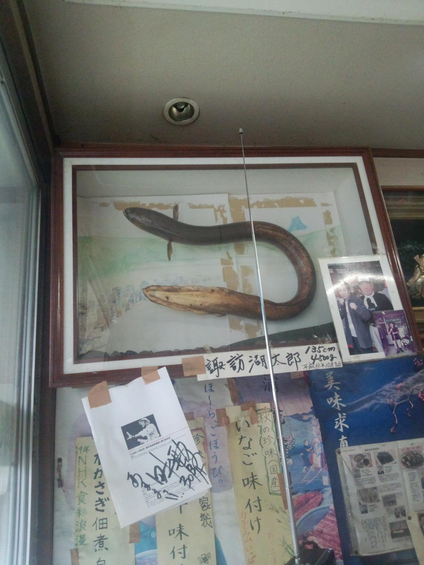 塚原川魚店 name=