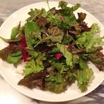 SAVOY - グリーンサラダ
