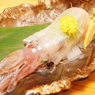 大将厳選の素材を使った、絶品お魚料理をお楽しみください♪