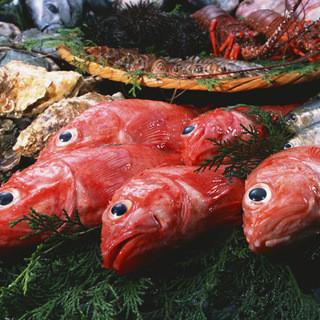 旬の魚を贅沢に味わえるお店