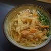 Makotoudon - 料理写真:かき揚げうどん