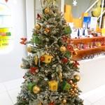 8b DOLCE - 2013.12.21 店内(大きなツリーがありました)