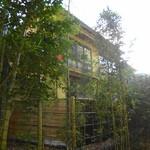 朴念仁 - 竹の小径に面しています