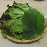 韓国家庭料理 ヘチョン - サンチュセット